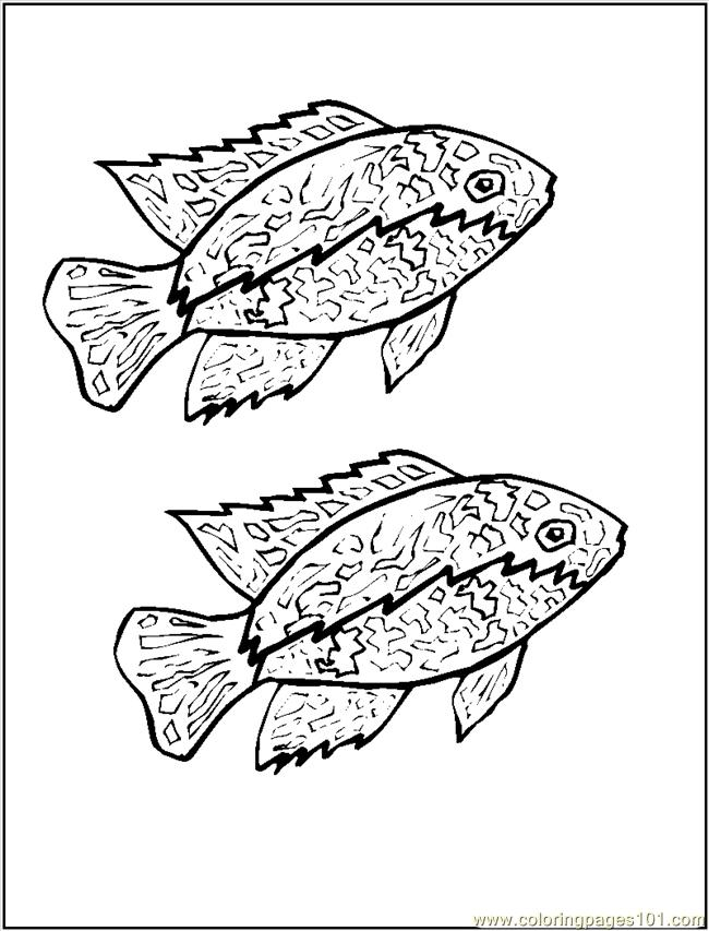 Cichlid Coloring Page Free Other Fish Coloring Pages