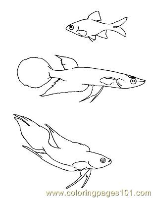 Fish27 Coloring Page