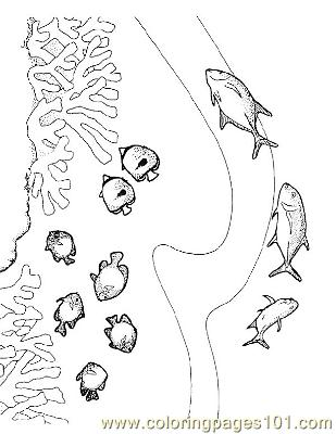 Fish41 Coloring Page