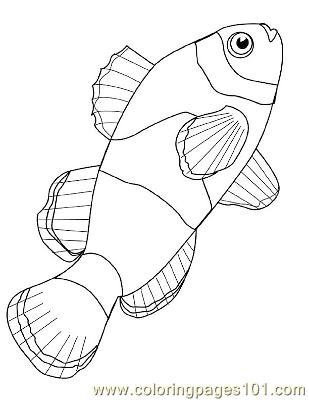 Fish51 Coloring Page