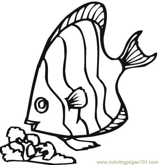 Fish (2) Coloring Page