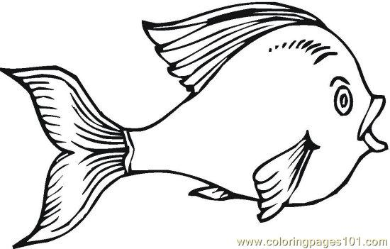 Fish 9 Coloring Page Free Other