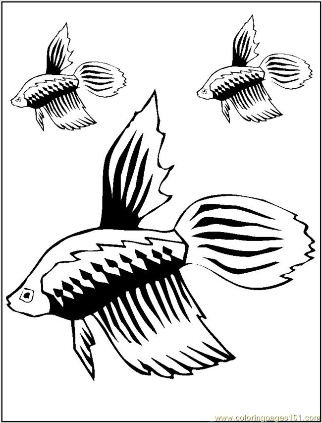 Guppy Coloring Page