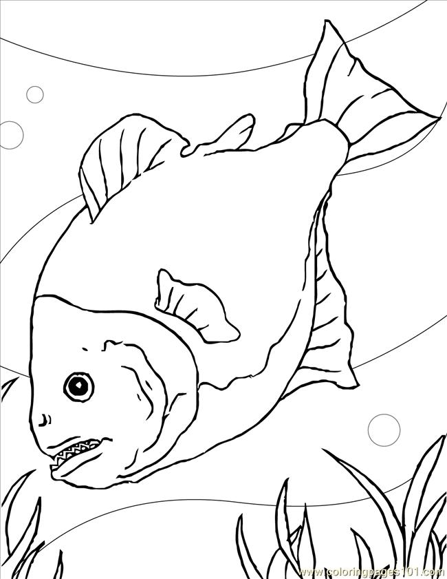 Piranha Ink Coloring Page Free Other Fish Coloring Pages