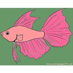 Fish Step 4 Free Coloring Page for Kids