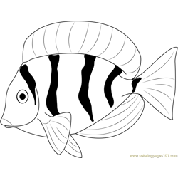 Fresh Water Fish Free Coloring Page for Kids