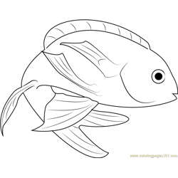 Marina Fish Free Coloring Page for Kids
