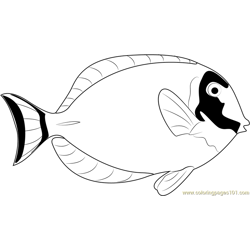 Powder Blue Surgeonfish Free Coloring Page for Kids