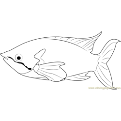 Rainbow Fish Free Coloring Page for Kids