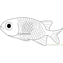 Small Fish Free Coloring Page for Kids