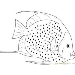 White Fish Free Coloring Page for Kids