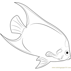 Yellow Mask Angelfish Free Coloring Page for Kids