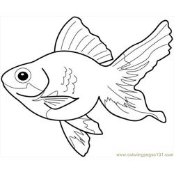 more other fish coloring pages fish3