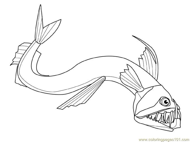 New Shape Fish Coloring Page