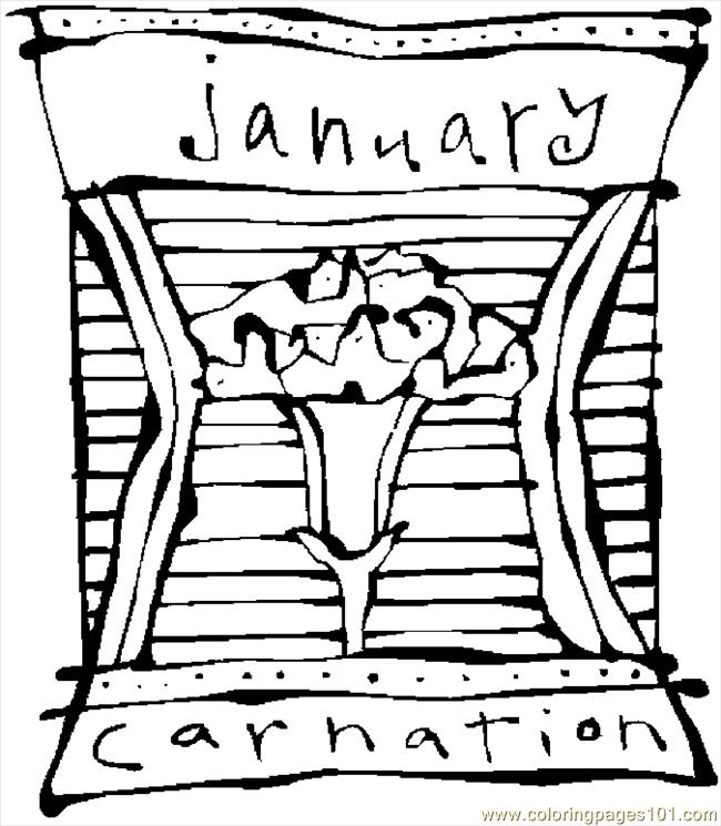 01 January   Carnation 3 Coloring Page