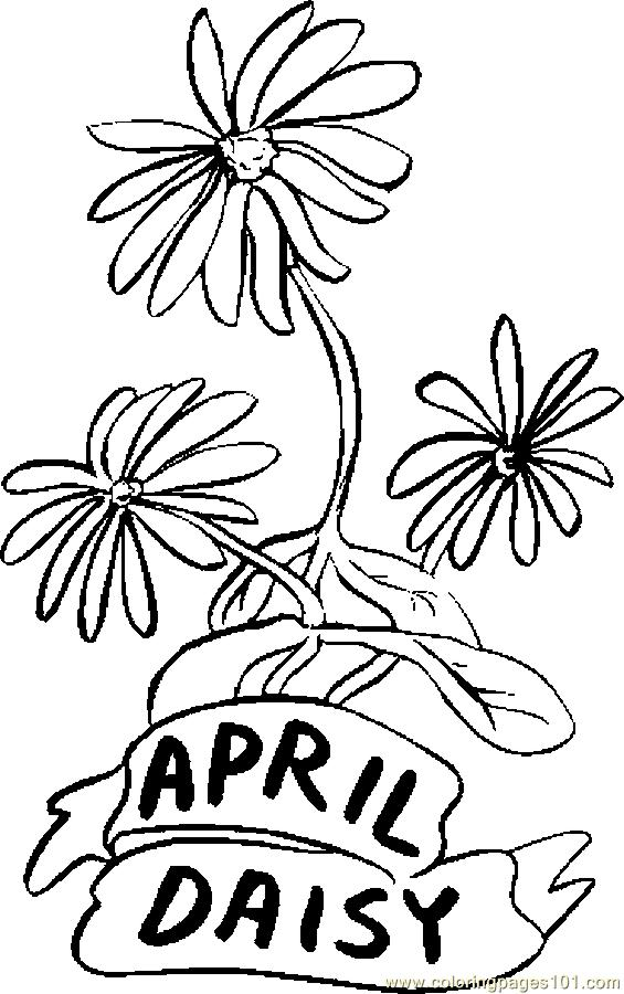 04 april daisy coloring page
