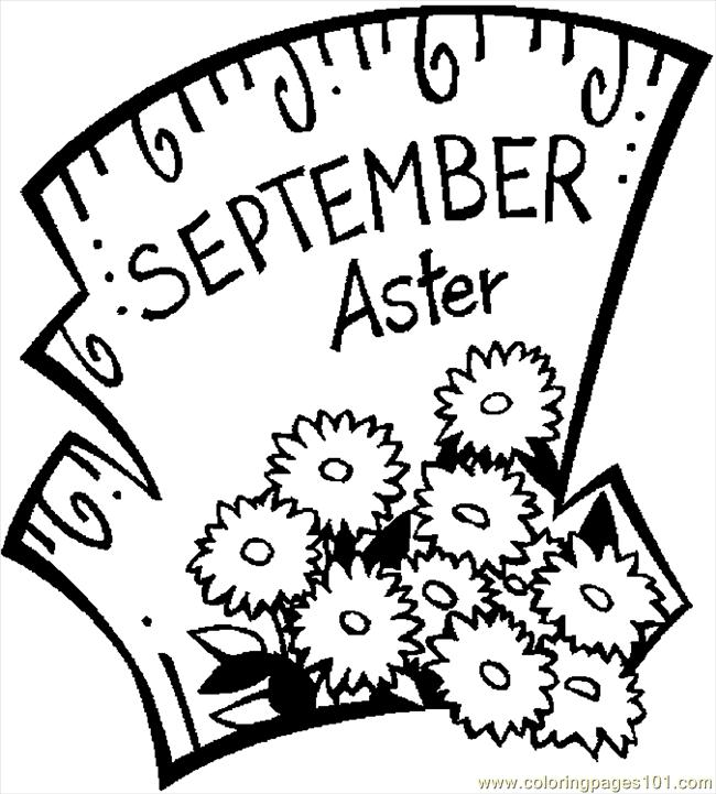 09 September   Aster 2 Coloring Page
