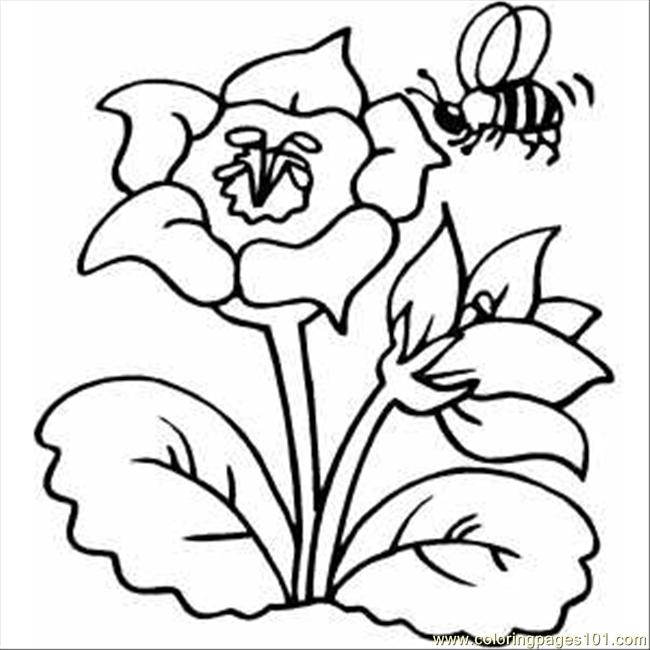 Flower With Bee Coloring Page