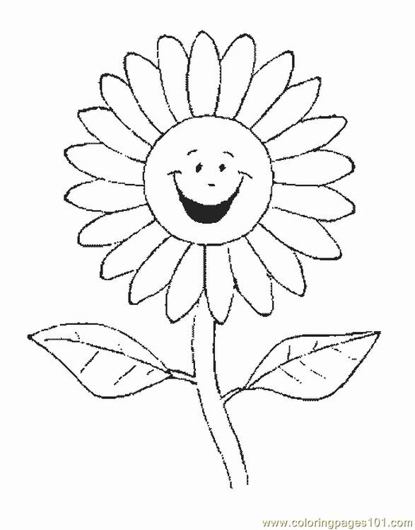 Flower Picture (5) Coloring Page