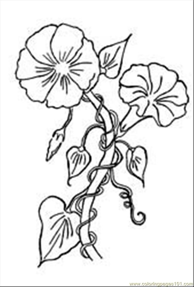 Glorythumbnail Coloring Page