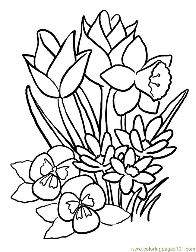 Springblooms Big Coloring Page - Free Flowers Coloring Pages ...