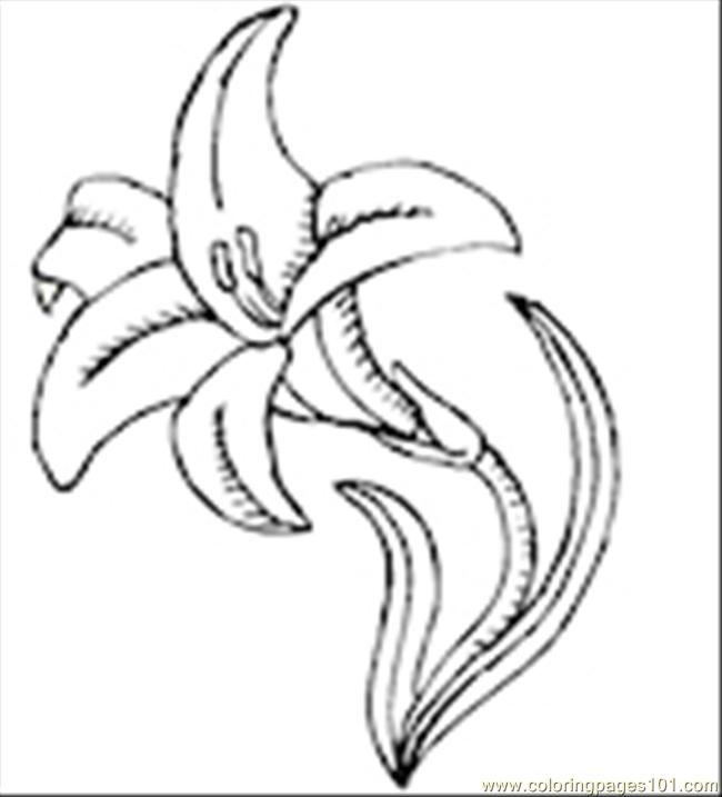 Collily1th Coloring Page