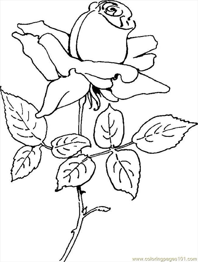 flower Page Printable Coloring Sheets | Free coloring pages sheets ... | 862x650