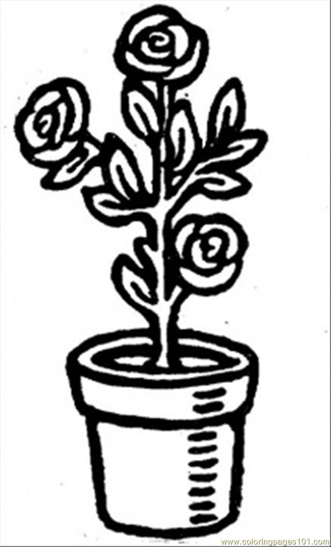 Roses In A Pot Coloring Page - Free Flowers Coloring Pages ...