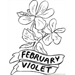 02 February   Violet 1