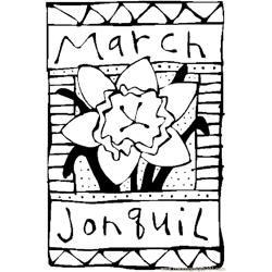 03 March   Jonquil 2