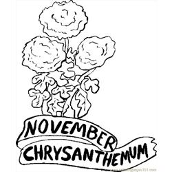 11 November Chrysanthemum 1 Free Coloring Page for Kids