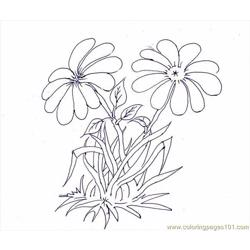 Flower Picture (1) Free Coloring Page for Kids