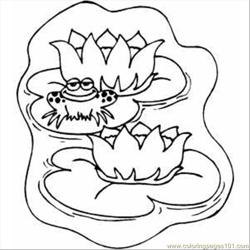 Lily Pads Free Coloring Page for Kids