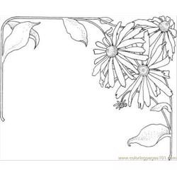 Aster 1 Coloring Page