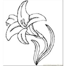 Collily1th Free Coloring Page for Kids
