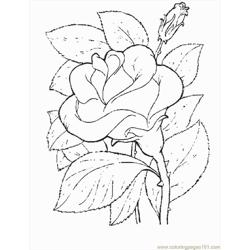 Flower14 coloring page