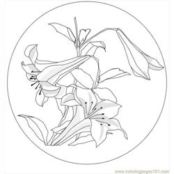 Lilies Hokusai coloring page
