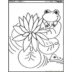 Water Lily Free Coloring Page for Kids
