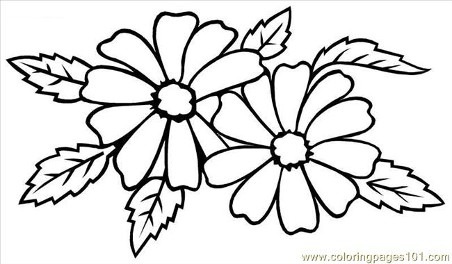 Coloring Pages Of Different Types Of Flowers. Types Of Wedding Flowers Coloring Page  Free