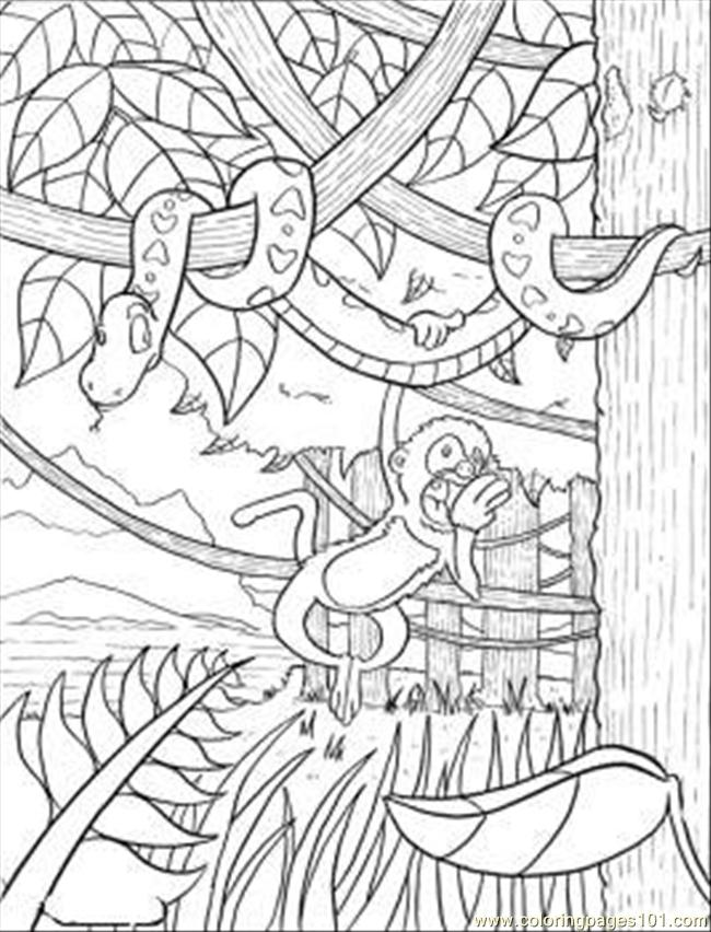 Rainforest Coloring Page Free