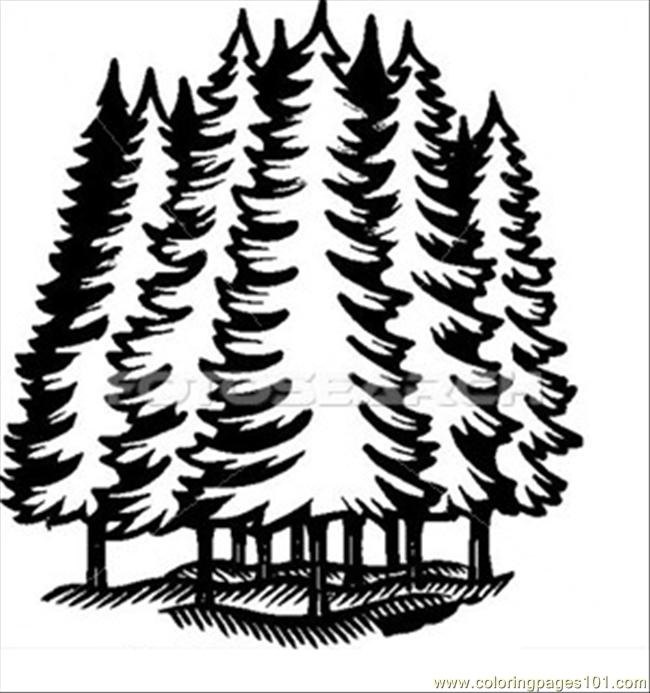 Forest B W jba0679 Coloring Page Free Forest Coloring