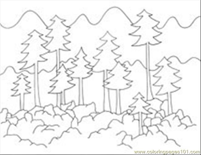 Foresttrees coloring page