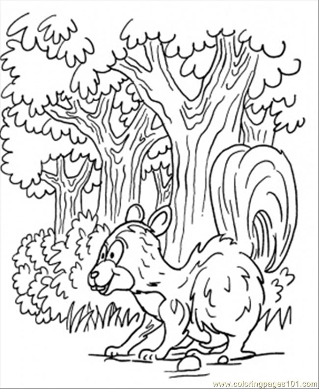 Skunk In Forest Coloring Page - Free Forest Coloring Pages ...