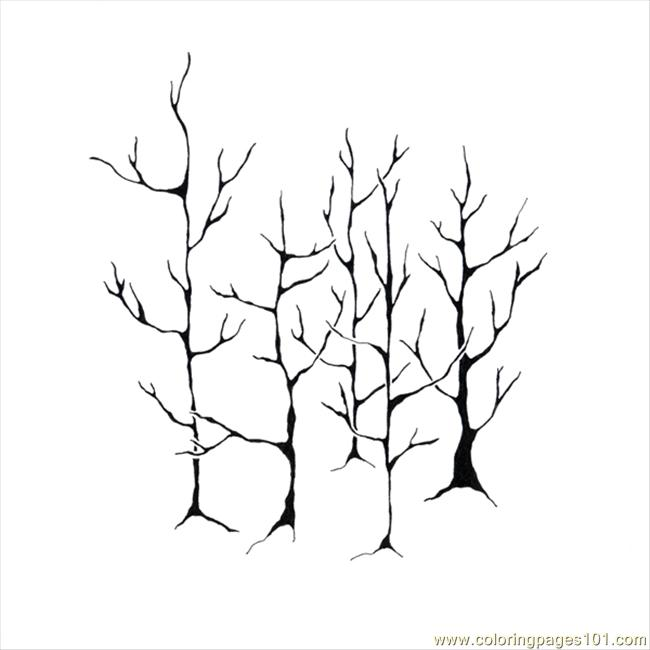 Small Forest Web Coloring Page