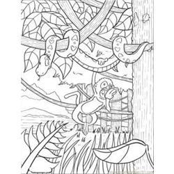 Rainforest Free Coloring Page for Kids
