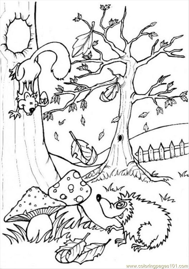 Ures Pages Photo Forest P6444 Coloring Page