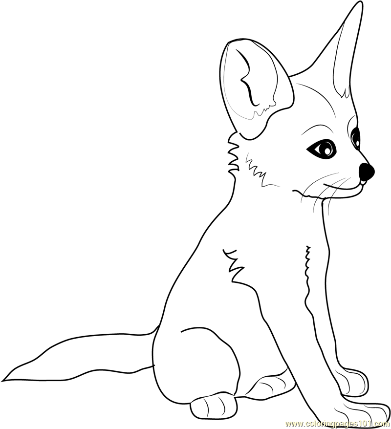 fennec fox baby coloring page free fox coloring pages rh coloringpages101 com baby elephant coloring pages baby tiger coloring pages - Babies Coloring Pages
