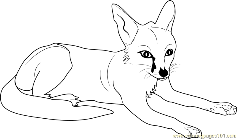 Fox relaxing coloring page