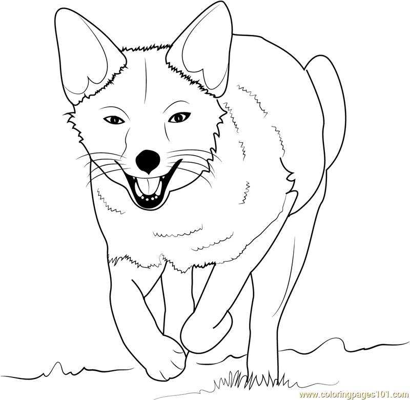 Fox Running Coloring Page - Free Fox Coloring Pages ...
