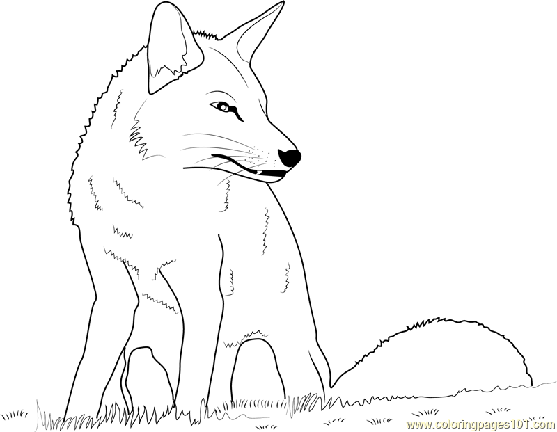 Fox Sitting Coloring Page